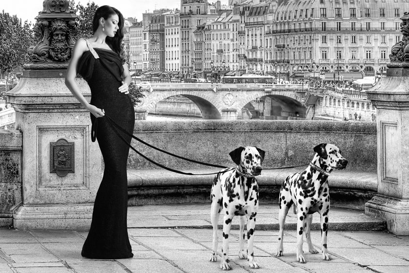 Walking in Paris with the Dog Aluart