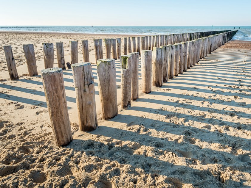 Two parallel rows wooden Poles Aluart