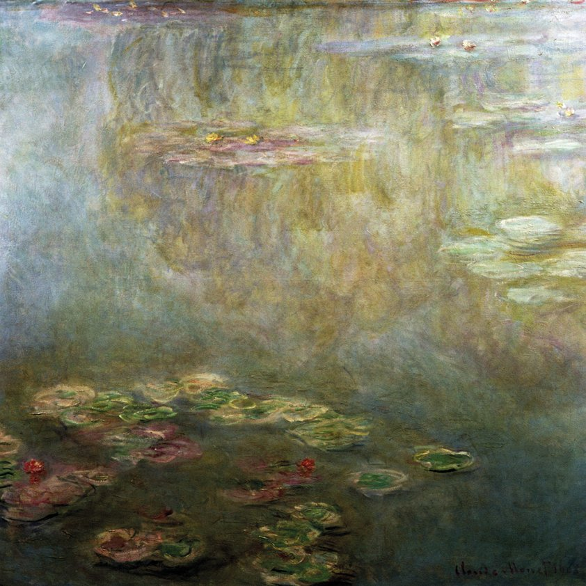 Water Lilies in Nature Aluart