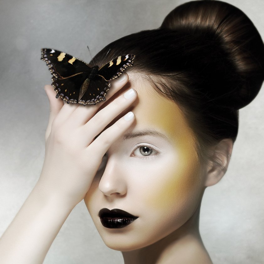 Girl with Butterfly Aluart