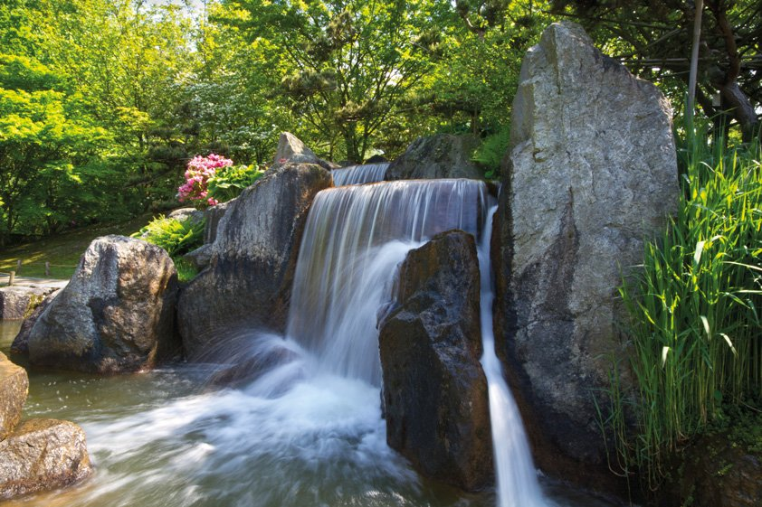 Waterfall in Forest with Rocks Aluart