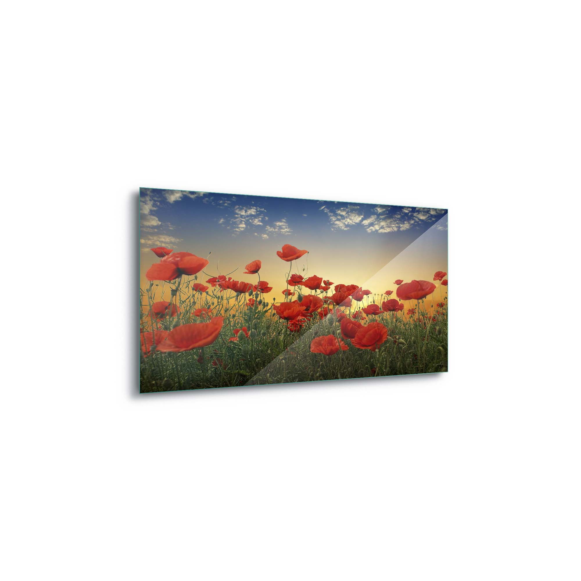 Glass printed Poppies in a Field