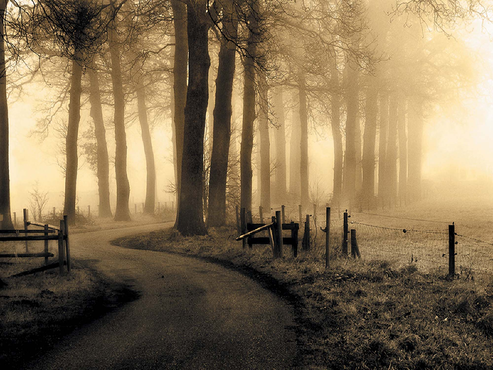 Road to Nowhere... by Petra Oldeman