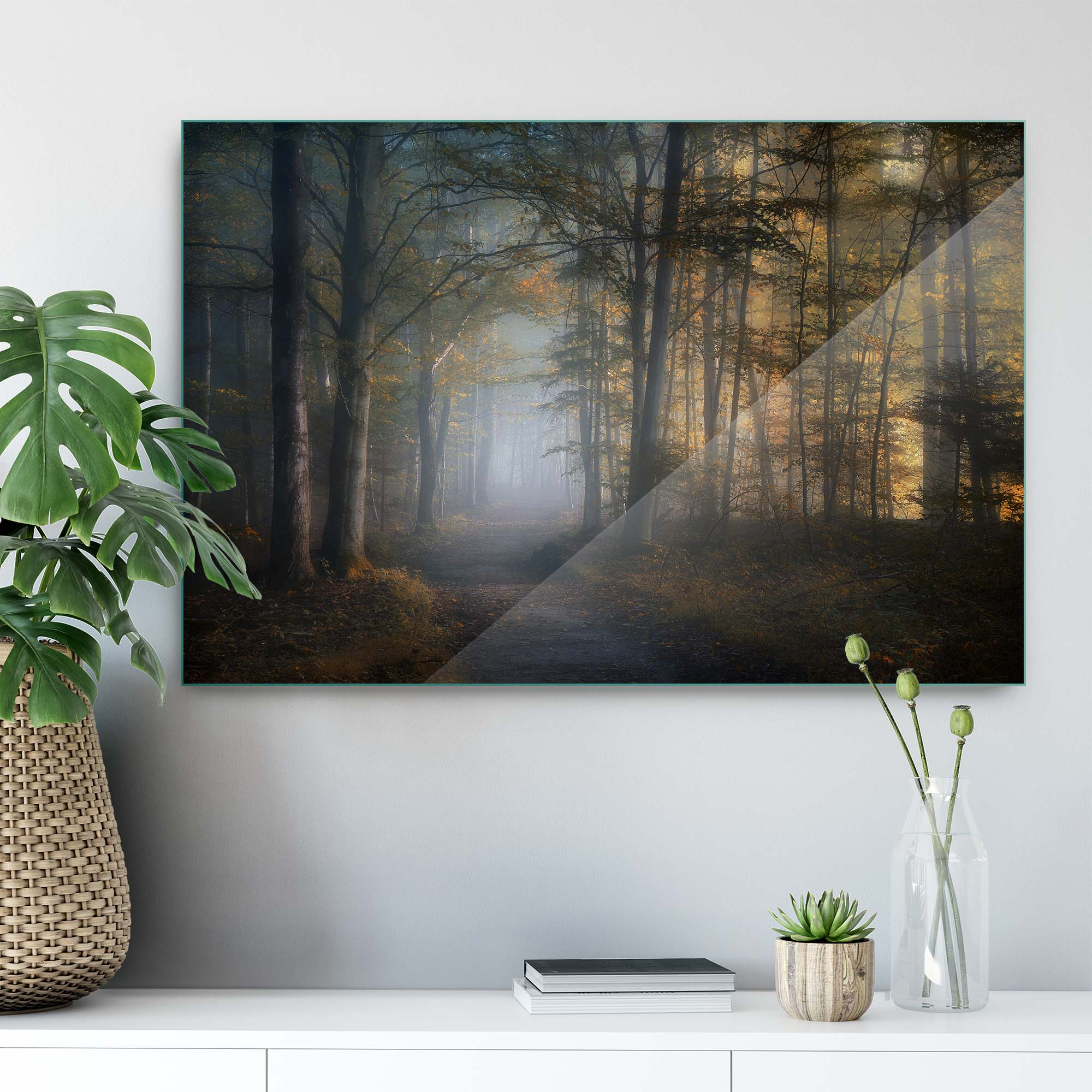 Glass printed Foggy in The Forest
