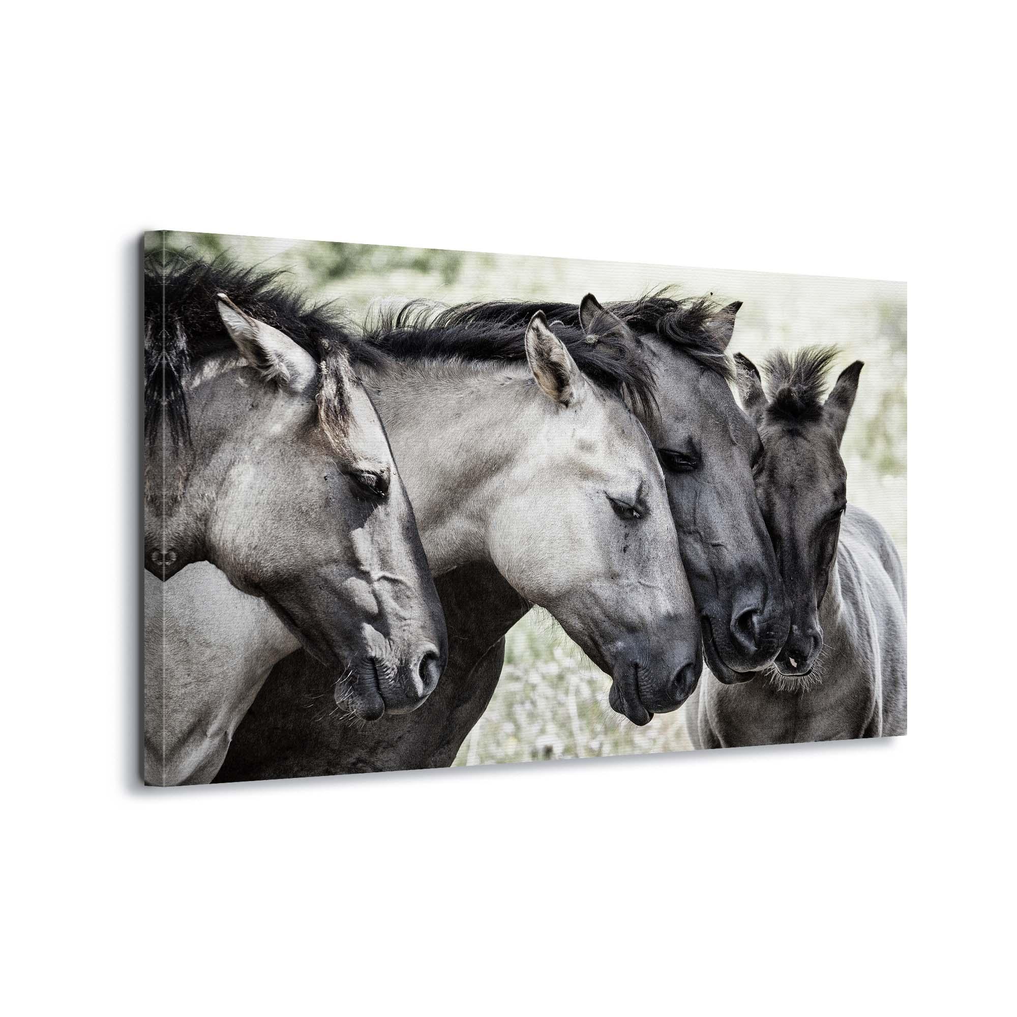 Four Konik Horses by Jaap