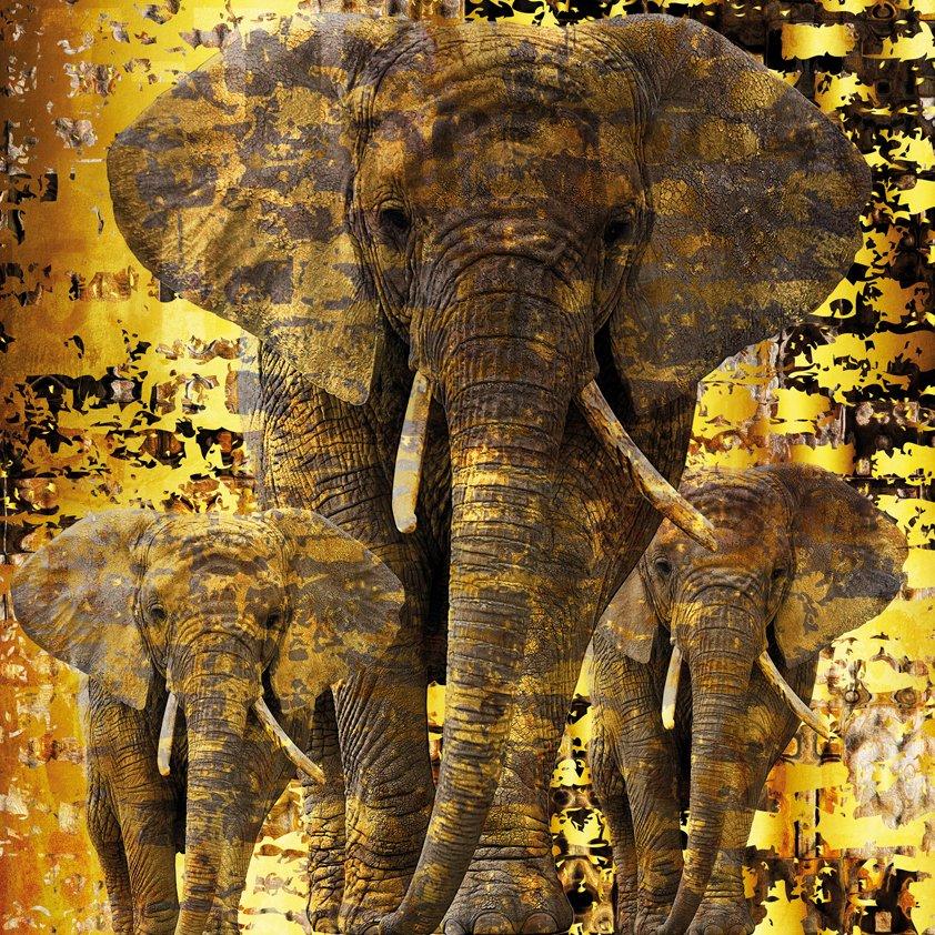 Design Tapijt Familie of Elephants