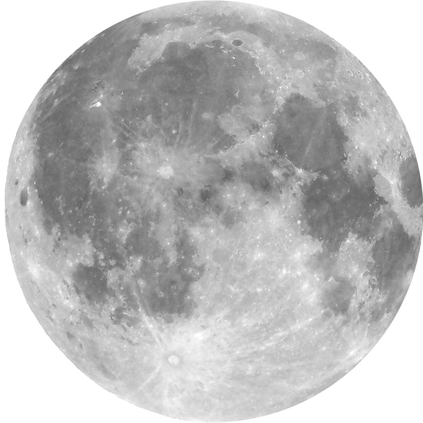 Design Tapijt Moon Wainting for Us