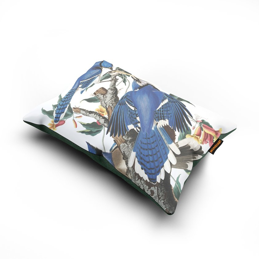 Cushion set/2, Blue Jay - bird