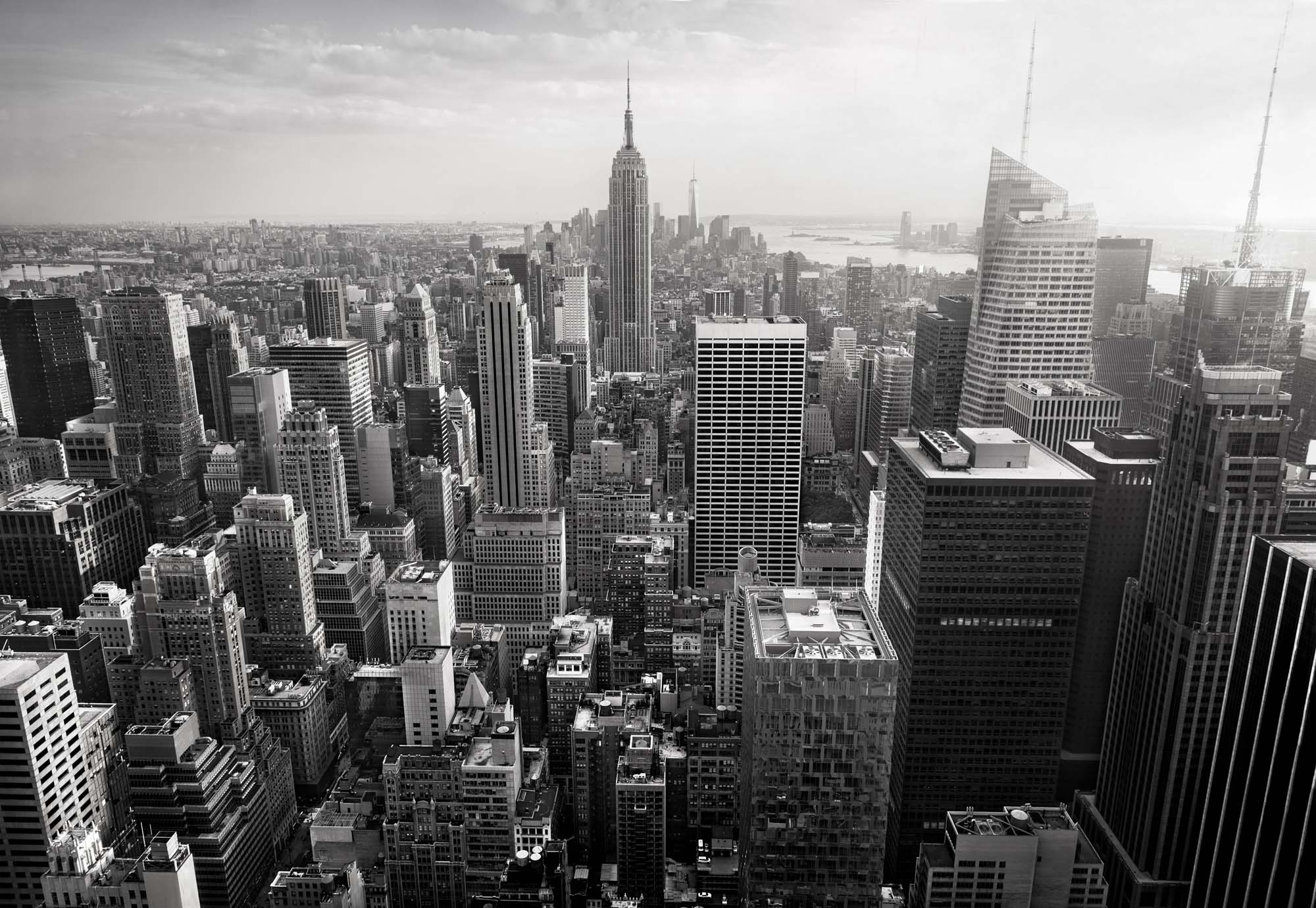 Fotobehang Empire State View in BW