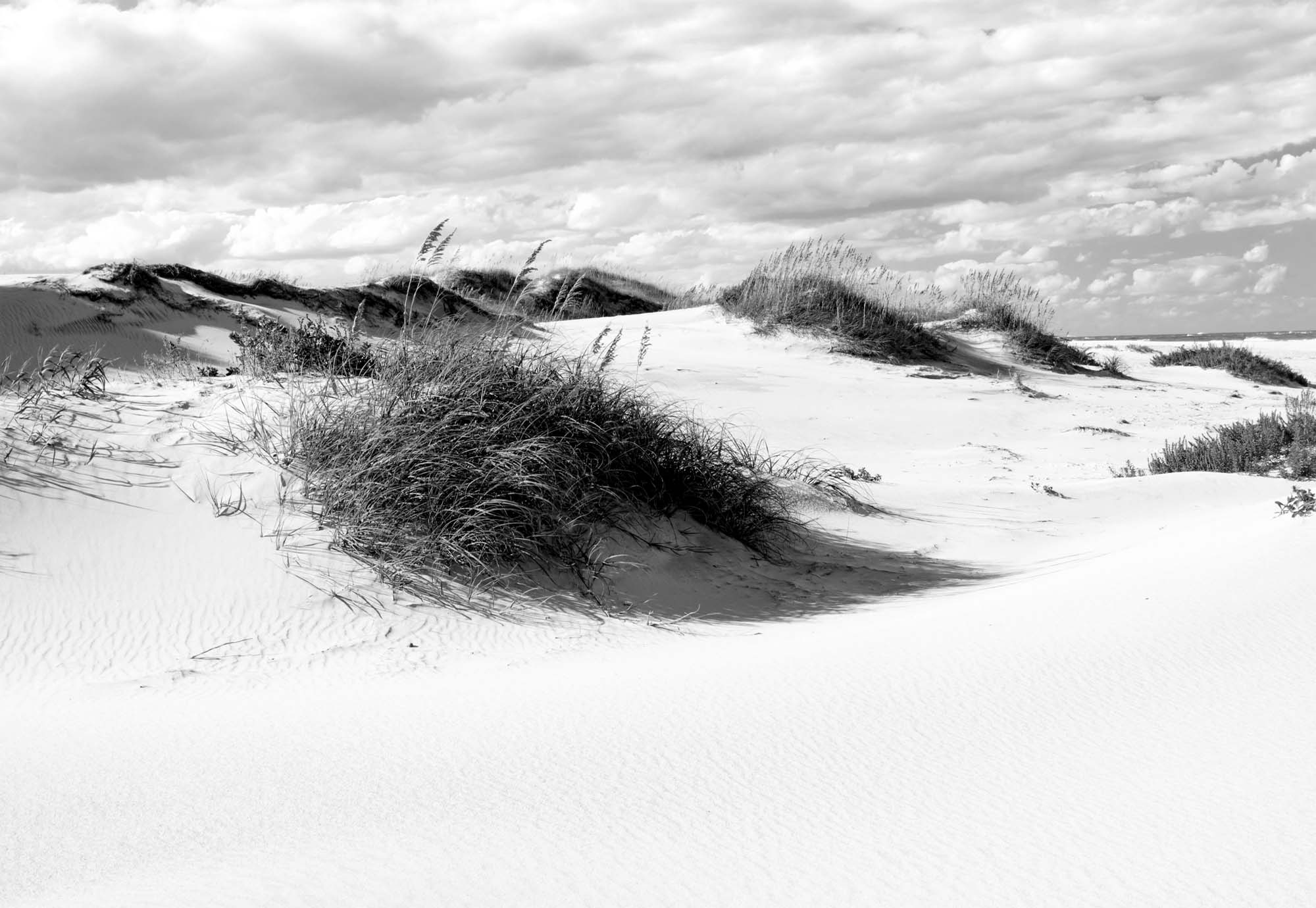 Fotobehang Afternoon in the Dunes BW
